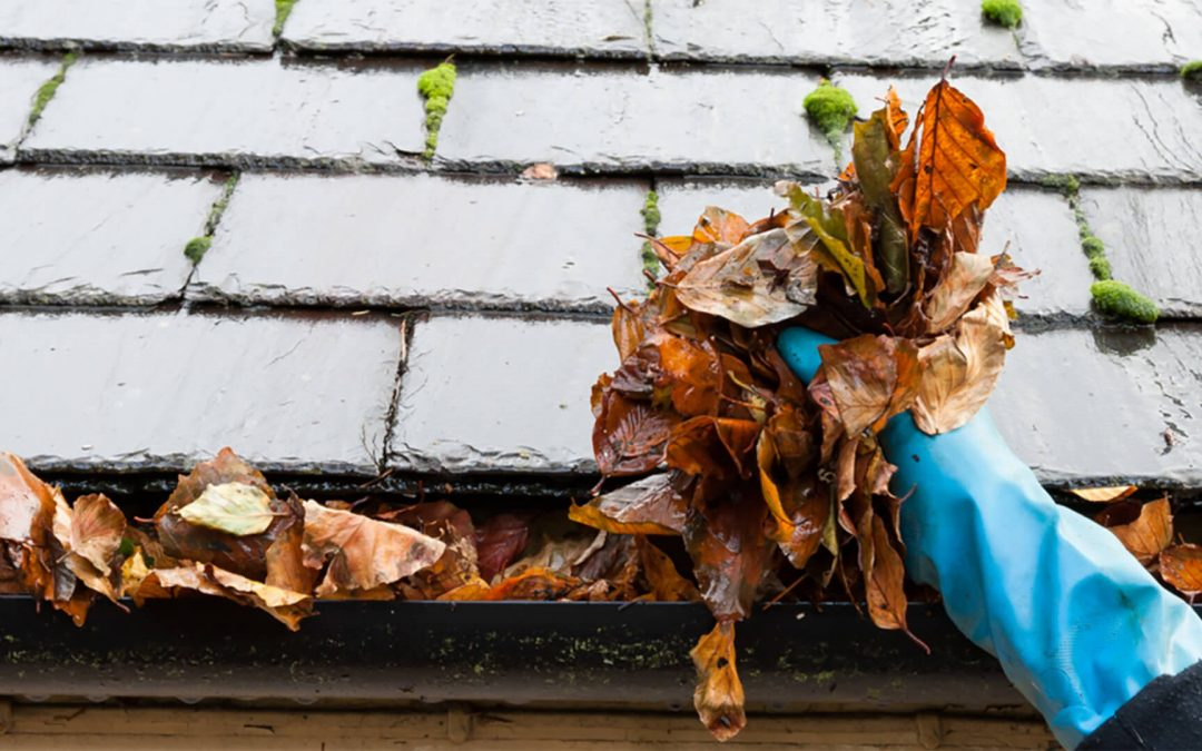How Often Should I Clean My Gutters?